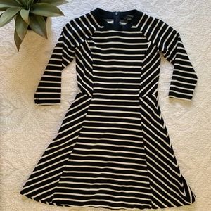 BANANA REPUBLIC | Flare Striped Petite Dress